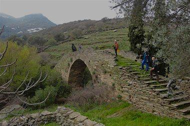 εμπειριες στην ανδρο -vilasinandros.gr